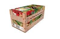 Knorr 100 % Soup Tikka Kanakeitto 4 x 2,5 KG -